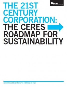 21st Century Corporation: The Ceres Roadmap to Sustanaibility