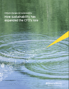 """""""How Sustainability has Expanded the CFO's Role"""