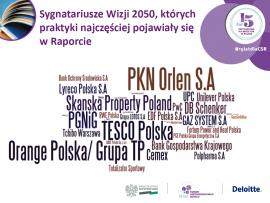 """Sygnatariusze Wizji 2050  w Raporcie """"Odpowiedzialny biznes w Polsce. Dobre praktyki"""""""