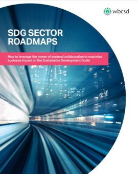 SDG Sector Roadmaps