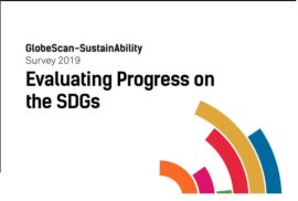 Evaluating Progress on the SDGs