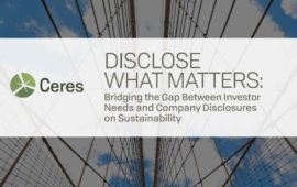 Disclose What Matters: Bridging the Gap Between Investor Needs and Company Disclosures on Sustainability