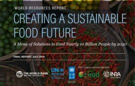 World resources report. Creating a sustainable food future