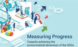 Measuring Progress. Towards achieving the environmental dimension of the SDGs