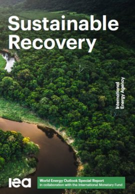 Sustainable Recovery. World Energy Outlook Special Report
