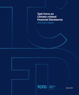 Task Force on Climate-related Financial Disclosures Status Report 2020