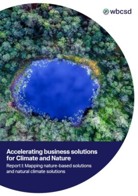 Accelerating business solutions for Climate and Nature. Report I: Mapping nature-based solutions and natural climate solutions