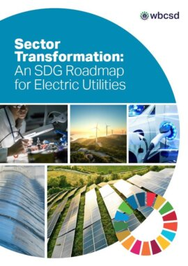 Sector Transformation. An SDG Roadmap for Electric Utilities
