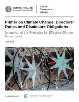 Opracowanie na temat zmian klimatycznych. Zobowiązania oraz obowiązki informacyjne członków rad nadzorczych